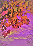 Colorful autumn by IWilsonArt