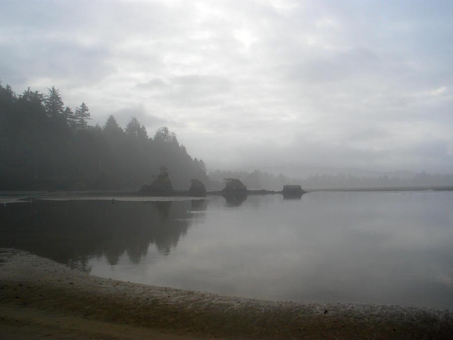 http://fc07.deviantart.net/fs50/i/2009/306/6/c/Foggy_Morning_Reflection_by_Thundercatt99.jpg