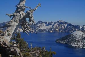 Crater Lake Blue by Thundercatt99