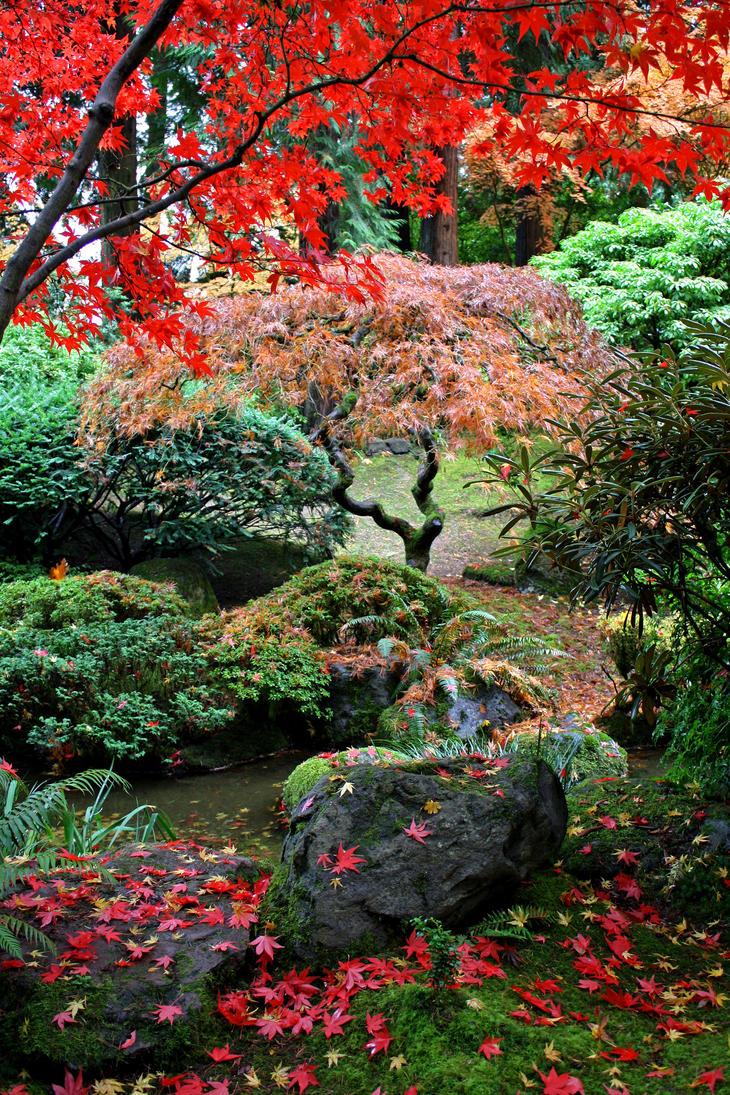 Autumn Garden by Thundercatt99