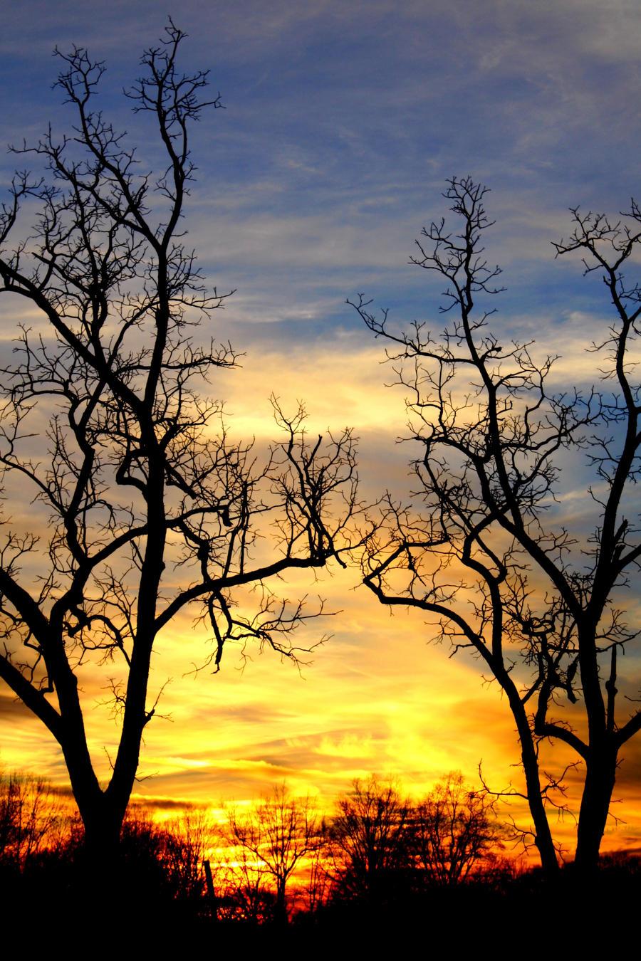 Carolina Sunset by Thundercatt99