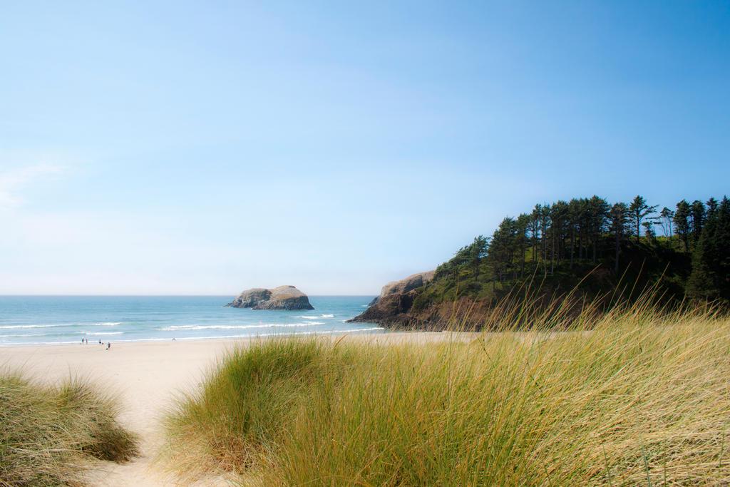Day at the Beach by Thundercatt99