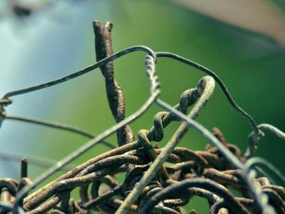 Woven Wires by batueritenel