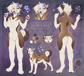 Kashi Ref by FR95