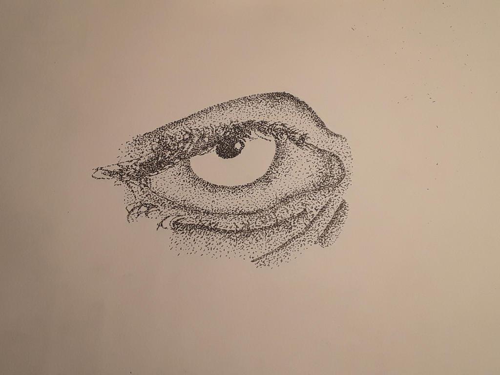 dotted eye drawing by filipyfish8shark1 on DeviantArt