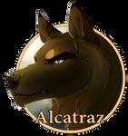 Alcatraz Medallion by lightningspam