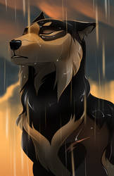 Wash Away My Sins by lightningspam