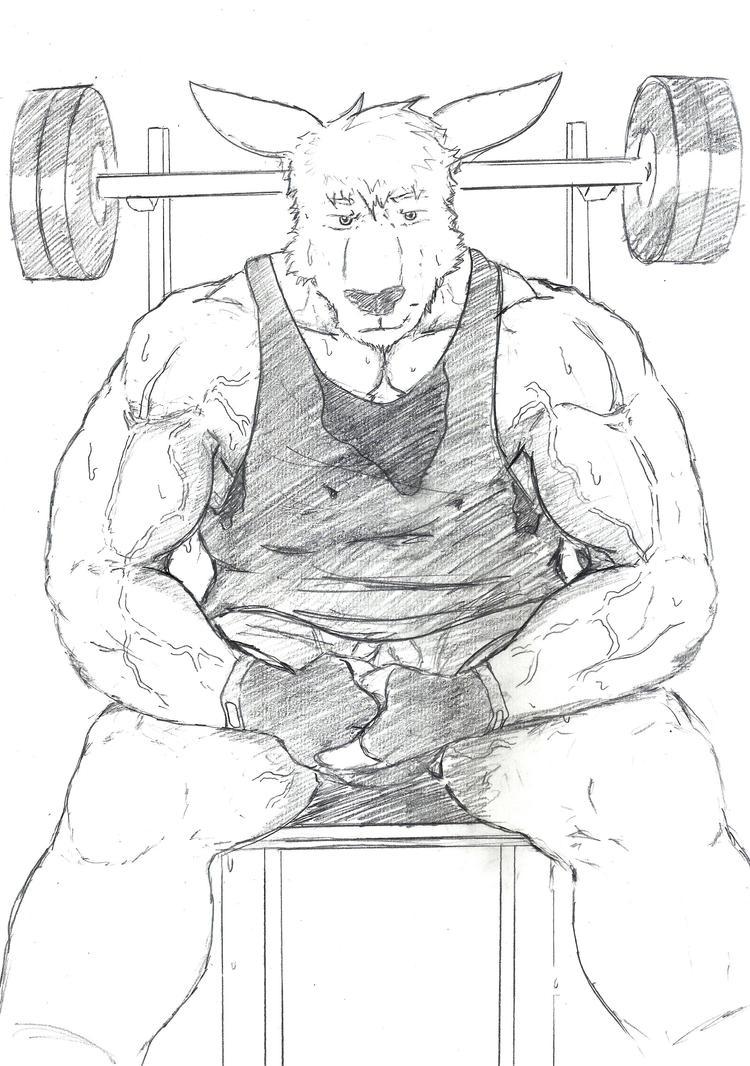 Resting roo by GingaTokkyu