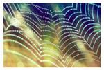 webdrops