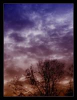 majestic sky by insaneone