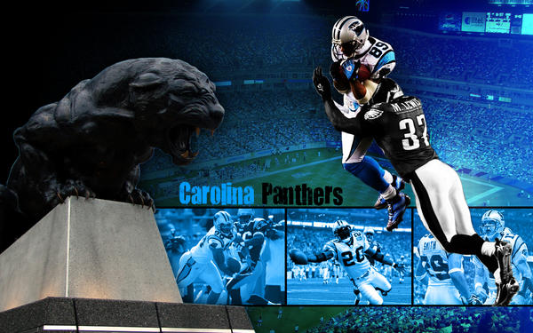 Carolina Panthers Wallpaper 1 by CardiacCat