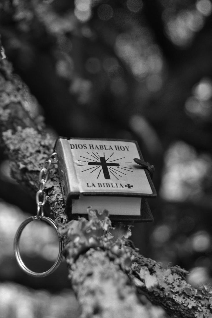 Mini key ring Bible by dominicky