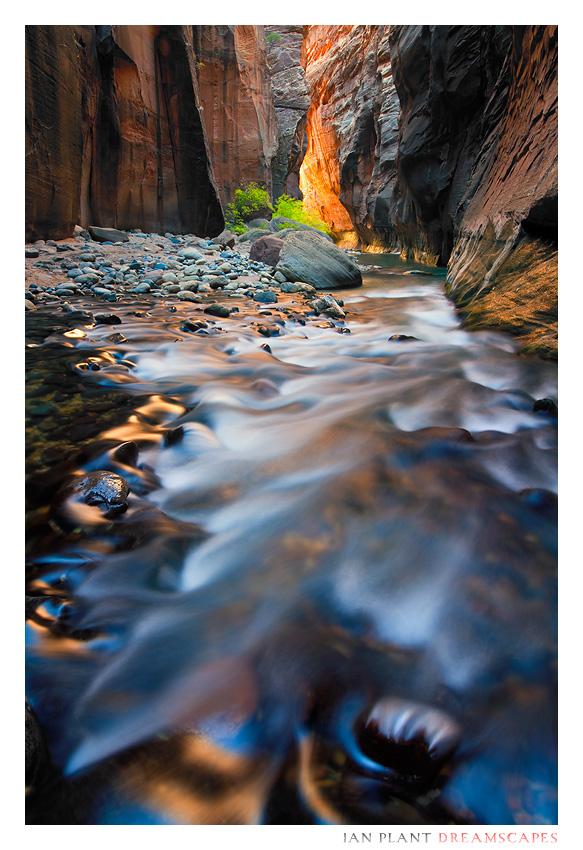 Canyon Kaleidoscope by Ian-Plant