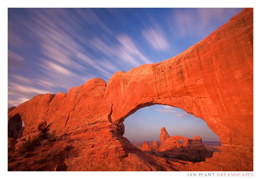 Desert Window by Ian-Plant
