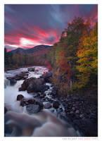 Autumn Ablaze by Ian-Plant