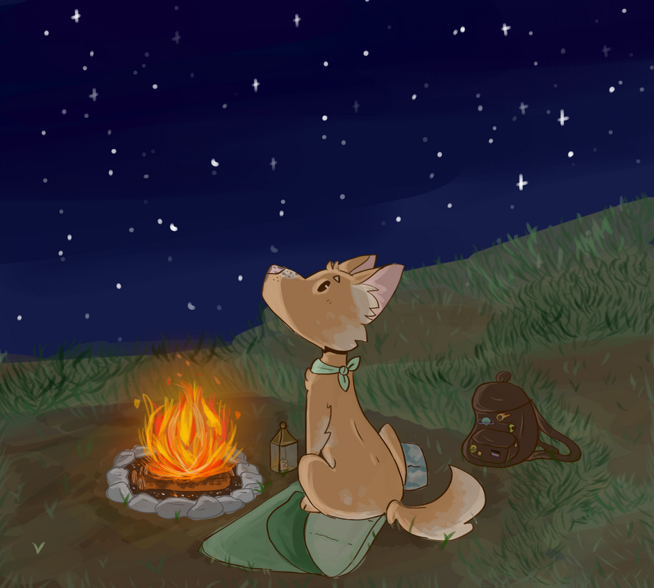 A Camping Boi by OrangeJuicee