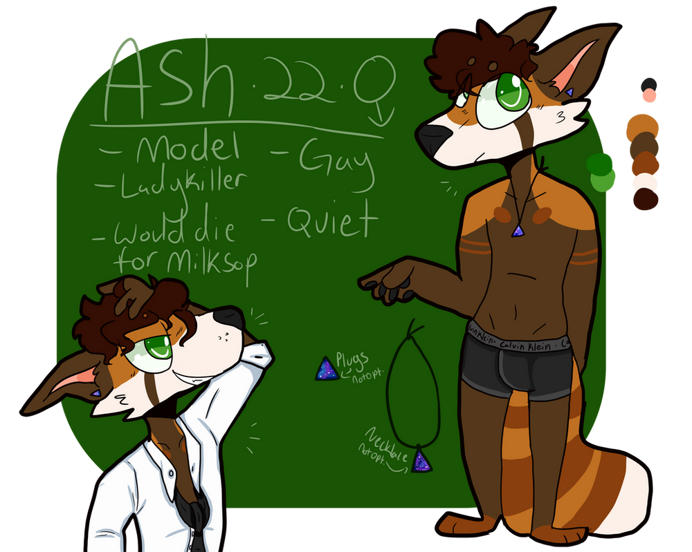 Ash ref sheet by OrangeJuicee