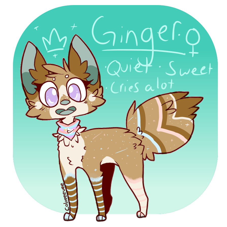 Ginger ref by OrangeJuicee