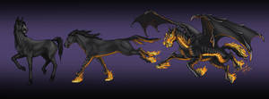 Nightingale's forms