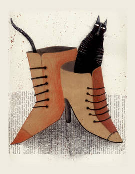 CAT IN SHOES