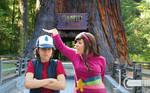 Gravity Falls - Little Dipper