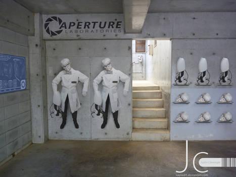 Portal 2 - Wheatleys on the Rack