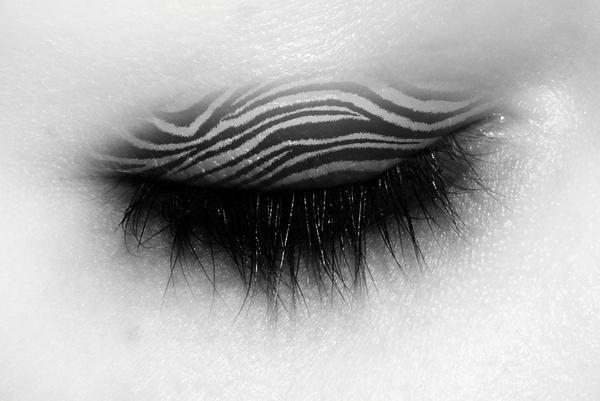 zebra print eye make up