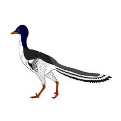The mer-raptor
