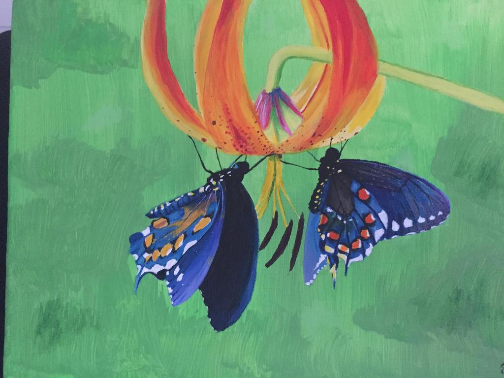 Two Butterflies by Mizzzen