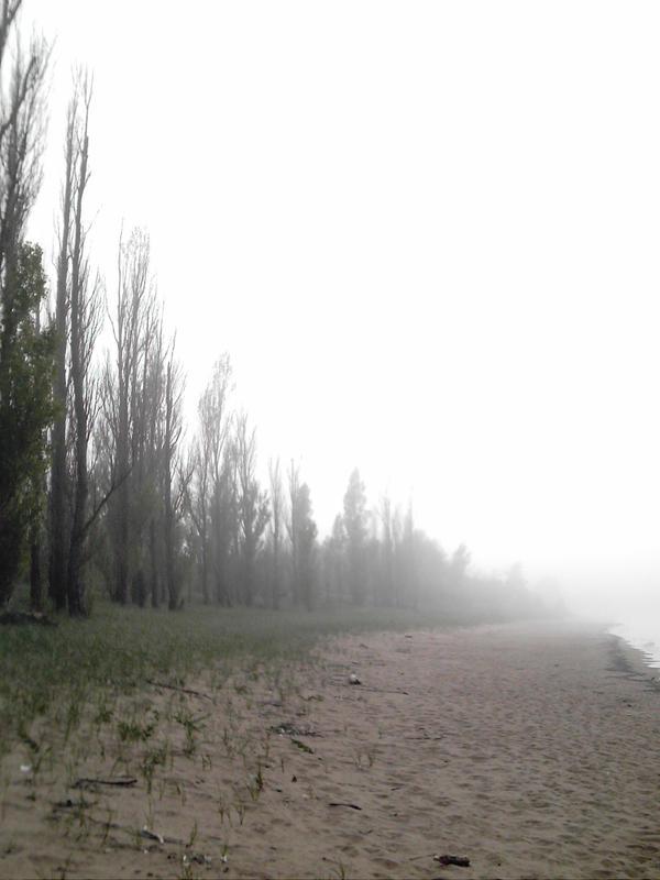 Fog Forever by LunarLark
