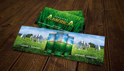 Sementes America Business Card