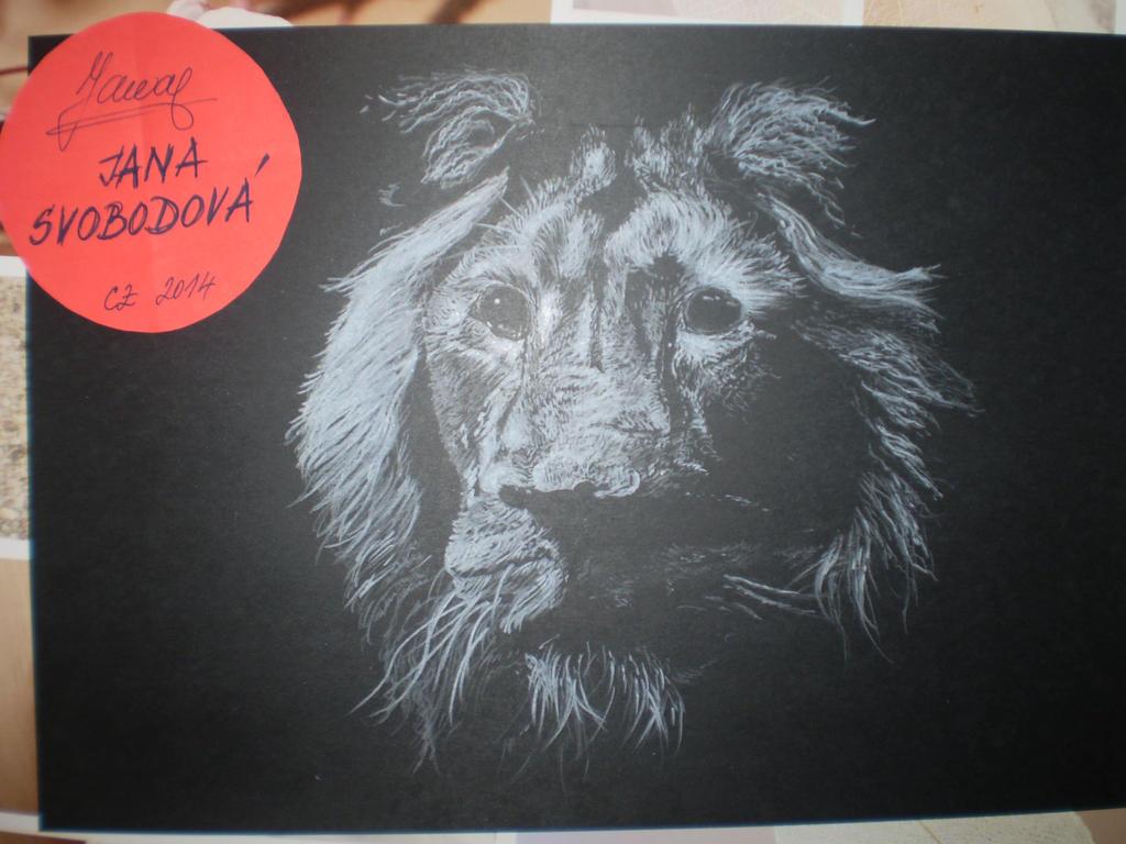 king lion by mumuku