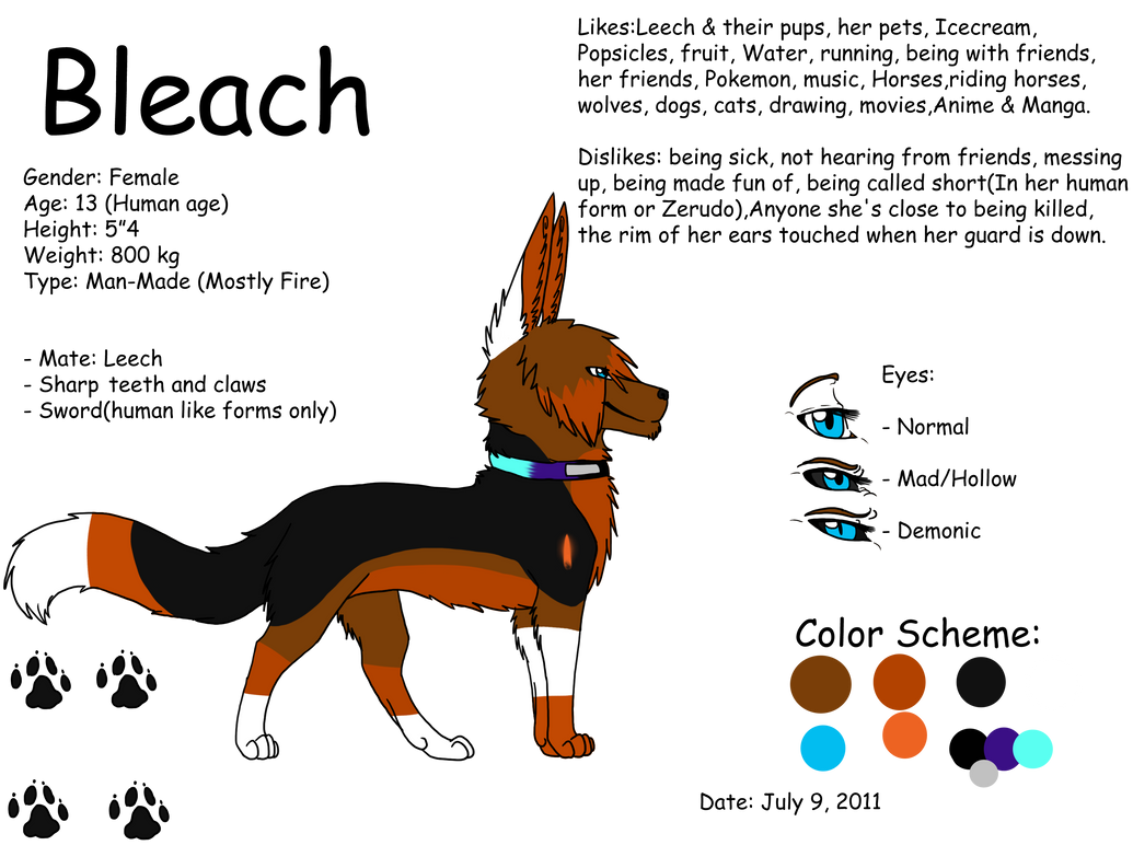 Bleach ref - 2011 by King-Icarus