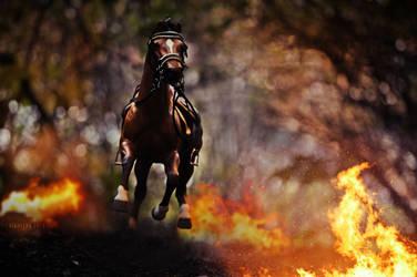 War Horse 2 by Frisullka1