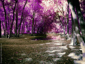 Off Kent Trails - Colormod by KBeezie
