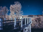 Infrared Selfie under Moonlight