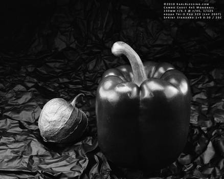 Tomatillo and Pepper (4x5 Tri-X Pro 320)