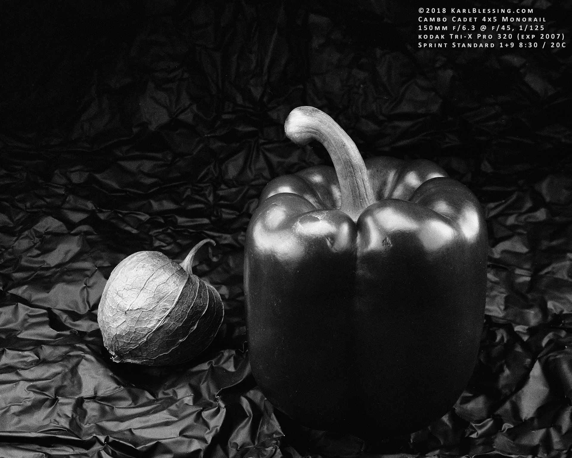 Tomatillo and Pepper (4x5 Tri-X Pro 320) by KBeezie