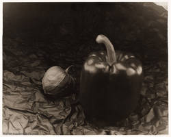 Tomatillo and Pepper (4x5 Print)