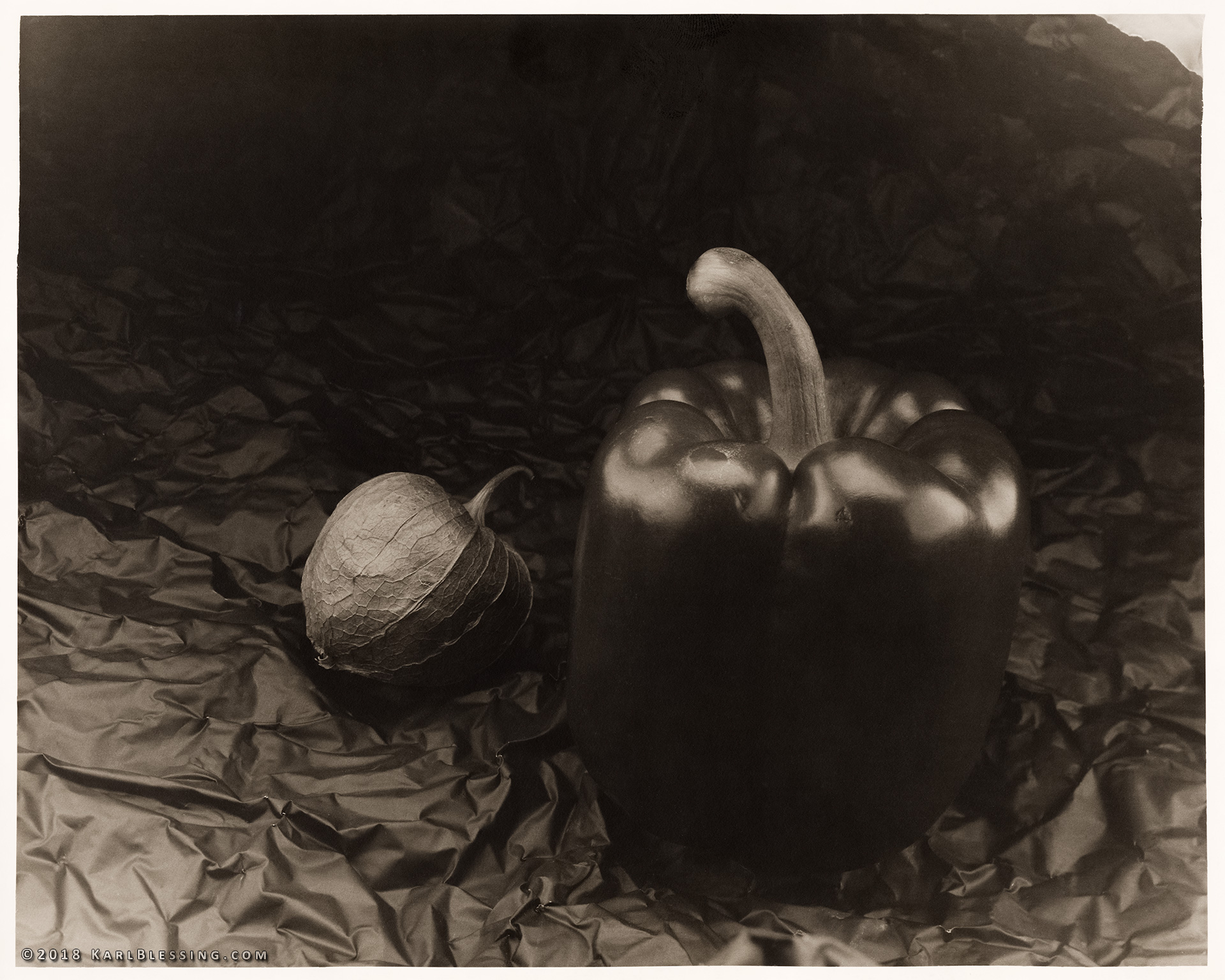 Tomatillo and Pepper (4x5 Print) by KBeezie