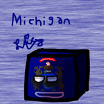Michigancube