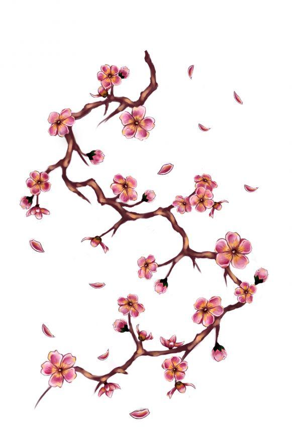 cherry blossom branch - photo #40