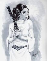 Princess Leia by Petarsaur