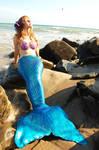 Mermaid at the Beach 1