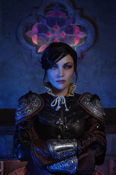 The Witcher 3: Blood and Wine. Syanna - 1