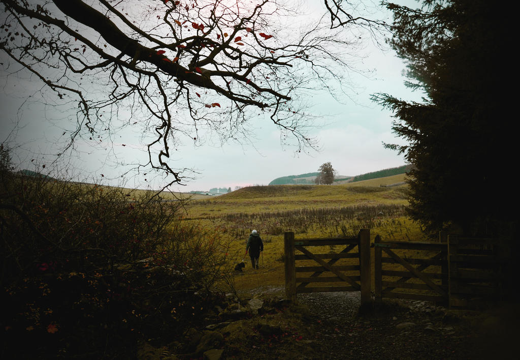 Scottish calmness by SpongySponge
