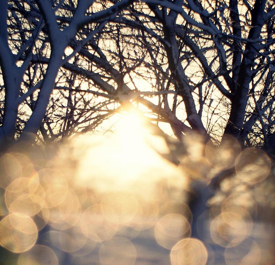 snowballs by h-ellosunshine