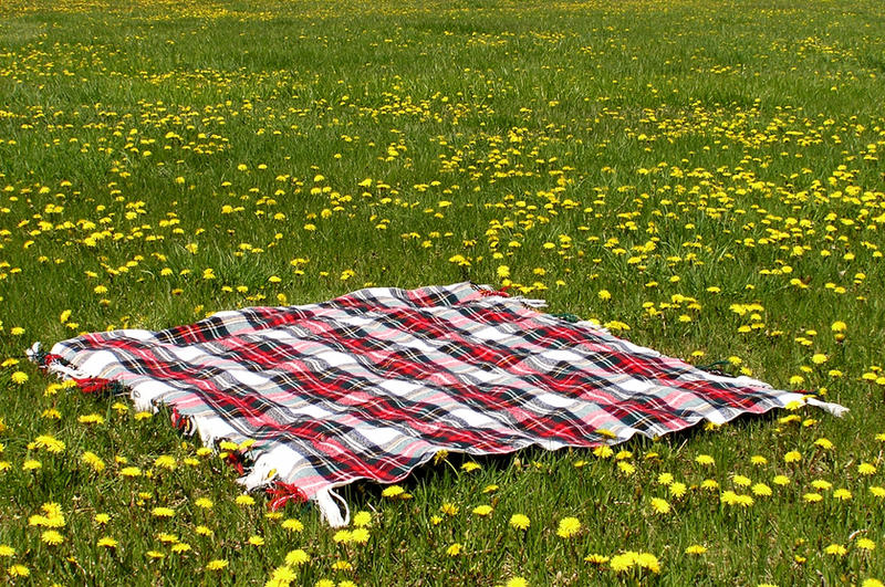 Picnic Blanket In Field 3 By Loopyker Stock