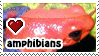 amphibians stamp by everyday-im-wumboing