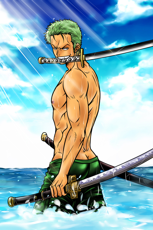 Roronoa Zoro - One Piece - by Sambre-sambre